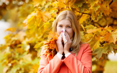 Natural Treatment for Fall Allergies and Cedar Fever